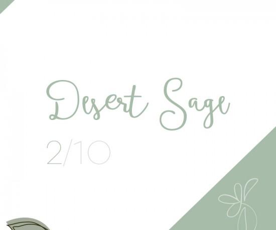 desert-sage_pantone
