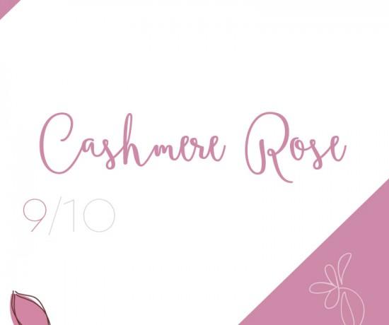 cashmere-rose-pantone