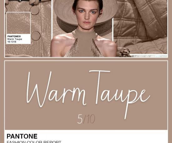 abre-pantone-warm-taupe