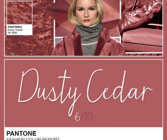 dusty-cedar-pantone-abre